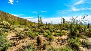 Phoenix to Maricopa, AZ